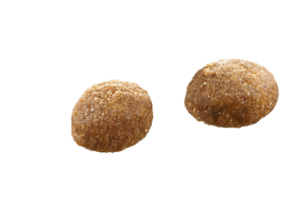 select gold katze persian kroketten
