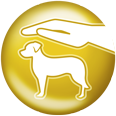 select gold hund schutz pure